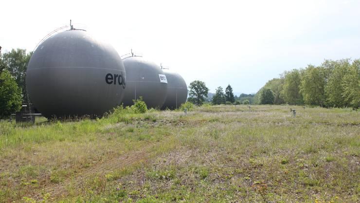 Das Areal Gaswerk wird durch Initiative des Vogelschutzvereins Schlieren aufgewertet.