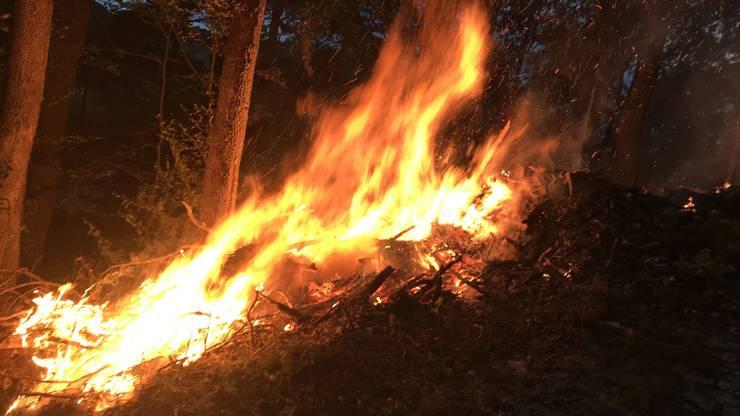 Die Feuerwehr hatte den Brand rasch unter Kontrolle, verletzt wurde niemand.