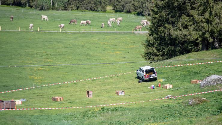 Ein Teil des von der Polizei abgesperrten Unglücksortes auf der Gerschnialp bei Engelberg.