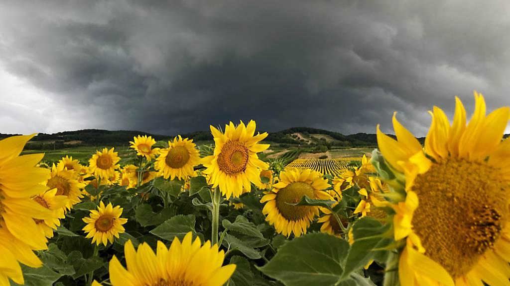 Gewitterfront überquerte die Schweiz – 3700 Blitze an einem Abend
