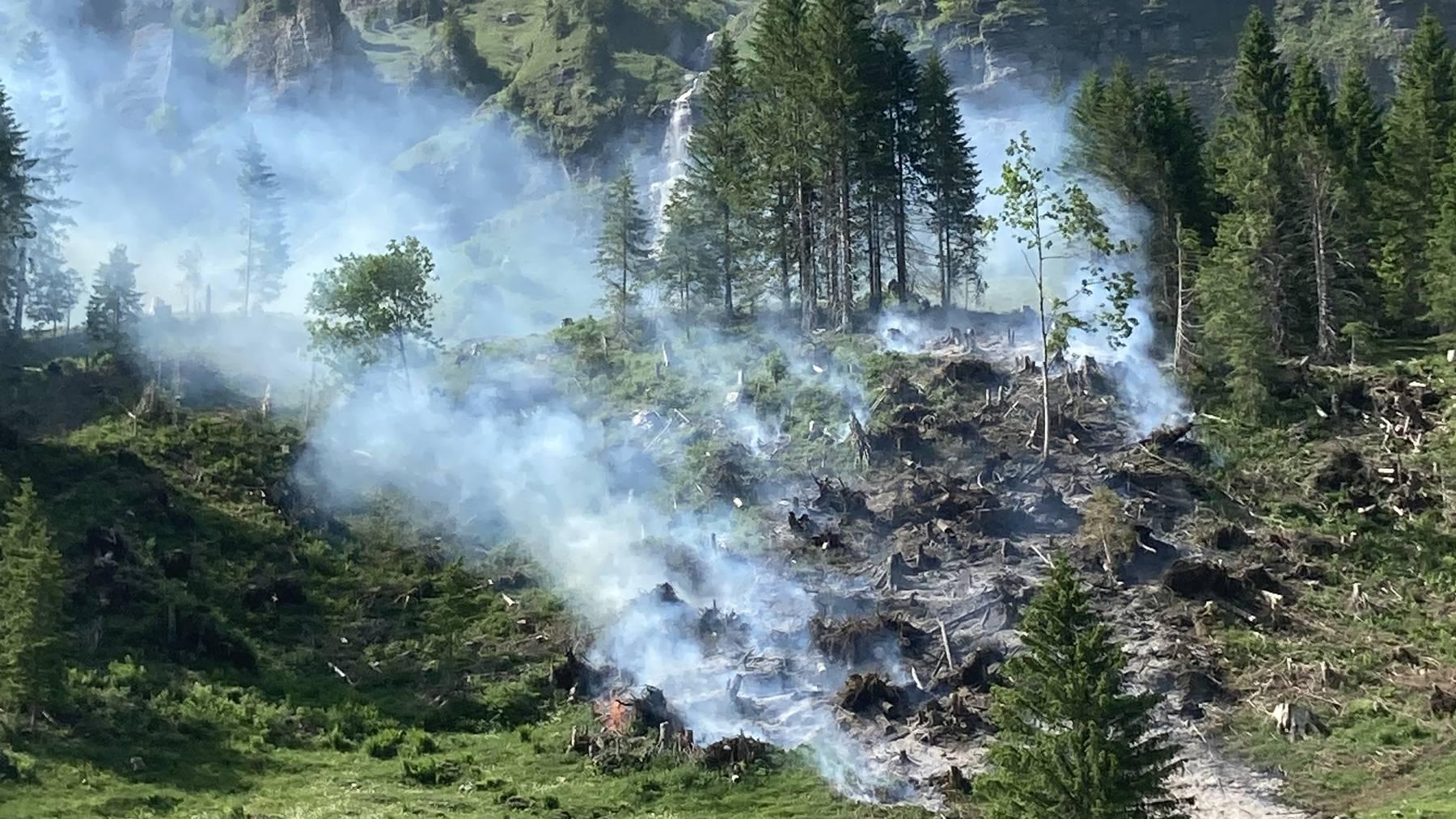 Über 40 Feuerwehrleute standen im Einsatz.