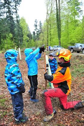 Mithilfe des Teams von Förster Daniel Hitz durften die Schulkinder Bäume pflanzen.