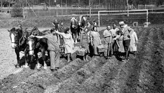 Anbauschlacht 1942: Mit vereinten Kräften wird ein weiteres Fussballfeld in einen Kartoffelacker verwandelt.