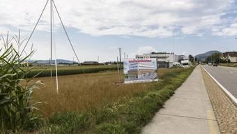 Profile für Neubauten südlich der Bielstrasse, zwischen Grenchen und Bettlach