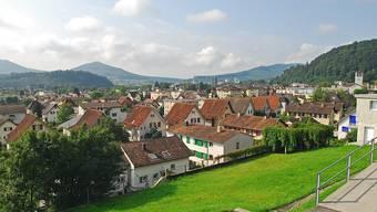 Am 29. August wird in Trimbach über zwei Motionen entschieden.