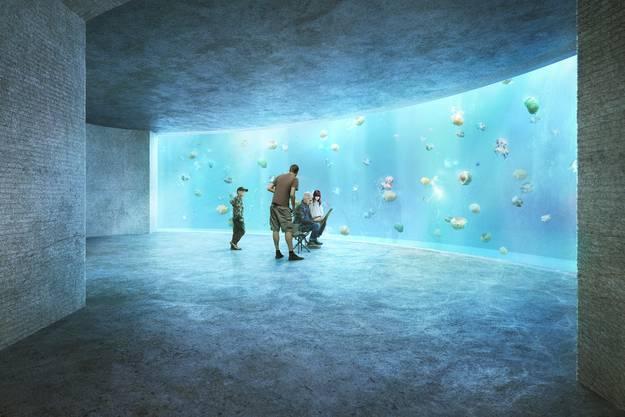 Quallen-Aquarium
