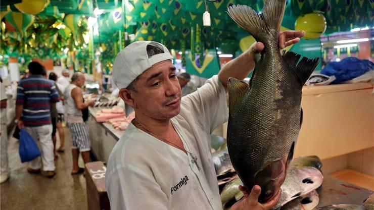 «Tambaqui», versprechen die Verkäufer, sei der beste Fisch.