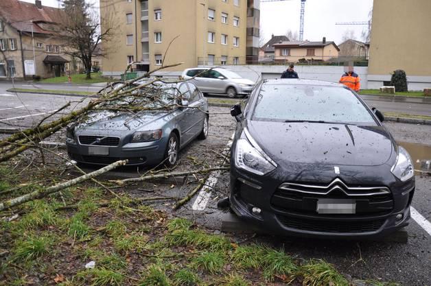 In Wangen bei Olten und Gerlafingen fielen umstürzende Bäume auf insgesamt drei parkierte Autos und richteten erheblichen Schaden an.