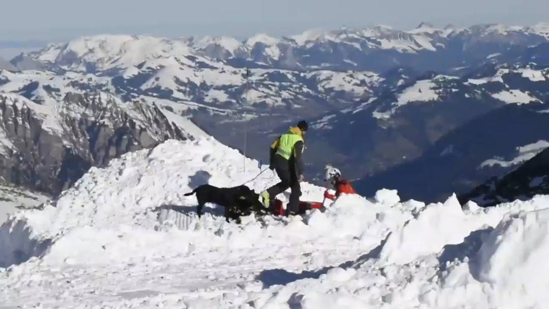 Lawinenrettungsübung auf 2800 Meter Höhe