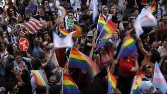 Mit Regenbogenfahnen ausgestattet, wurde in Istanbul für die Rechte von Homosexuellen demonstriert.