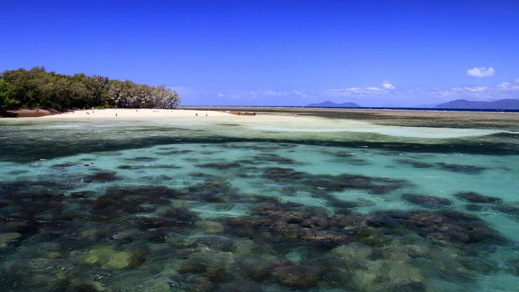 Aus der Öde des australischen Outbacks gelangen die Urdorfer Reisenden an den Pazifischen Ozean. Im Great Barrier Reef schnorcheln sie zwischen farbenprächtigen Korallengärten.