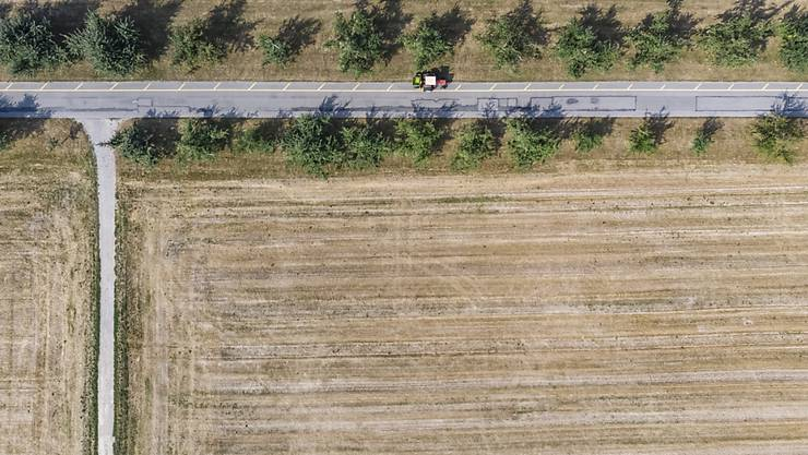 Laut einer 30-Tage-Prognose der Forschungsanstalt WSL könnte sich die teils prekäre Situation mit der Trockenheit bis Ende August etwas beruhigen. (Themenbild)