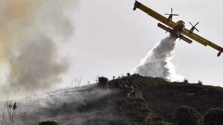 Geringer Niederschlag und ein warmer Herbst haben das Risiko von Bränden in weiten Teilen Spaniens erhöht. Hier löscht ein Flugzeug einen Brand in Berango im Norden des Landes.