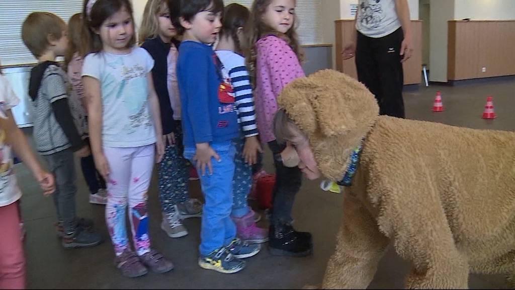 150 Jahre Aargauer Tierschutz: Gegen Hundephobie mit Wulli Wuff
