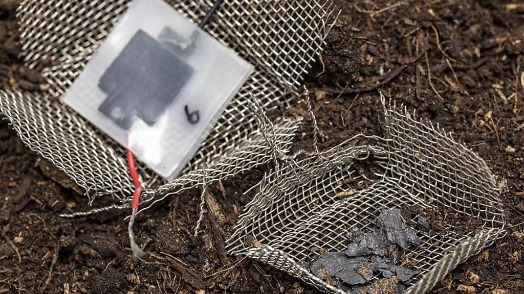 Die Mini-Batterie belastet die Umwelt nicht, wenn sie nach Gebrauch einfach in die Natur geworfen wird: Innerhalb von wenigen Wochen löst sie sich auf, nur wenige sichtbare Kohlenstoffpartikel bleiben zurück. (Pressebild)