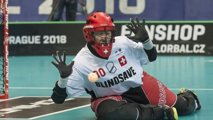 Pascal Meier hatte an der Unihockey-WM im Dezember 2018 in Tschechien massgeblichen Anteil am Bronzemedaillen-Gewinn der Schweiz. Als Lohn wurde er als erster Torhüter, als erster Schweizer und als erster Spieler, der nicht im Final stand, zum MVP des Turniers gewählt. Dazu stand er im All-Star-Team