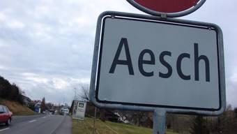 Die Gemeinde Aesch will Glasfaser.