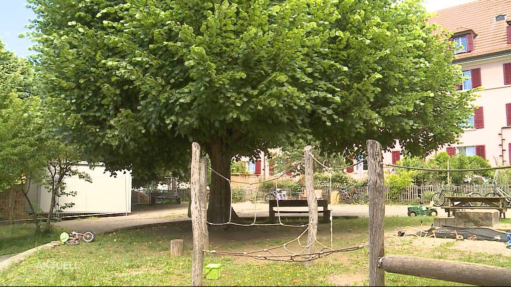11-Jähriger fällt auf Spielplatz in Solothurn von Baum
