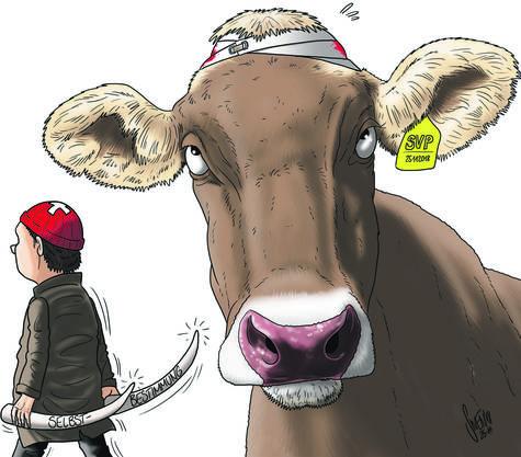 So sieht Karikaturist Swen das Abstimmungsresultat.