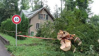 Der Baum beschädigte das Gebäude schwer.