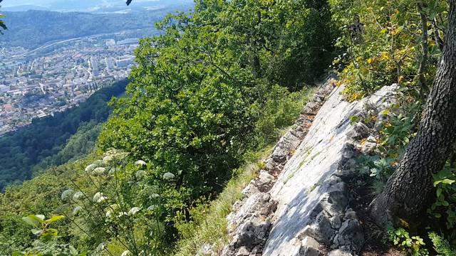Wanderin stürzt auf der Lägern – so herausfordernd ist der Gratweg