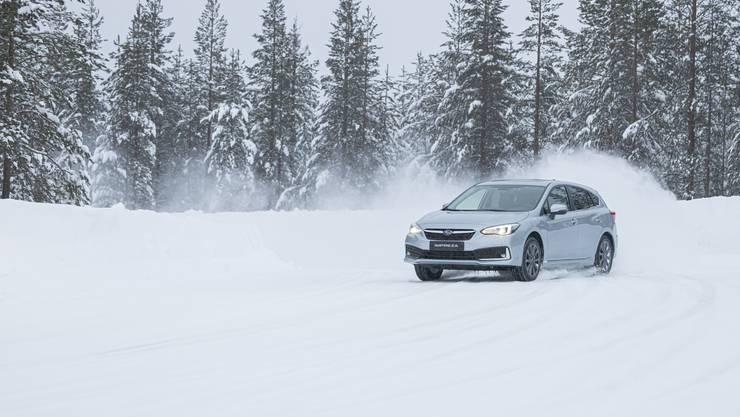 Zuhause auf der Rallyepiste? Nicht nur: Hierzulande steht Subaru vor allem für praktische, robuste Alltagsautos.