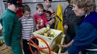 Lehrreich: Zuerst müssen die Äpfel zerhackt werden. Franziska Schädel