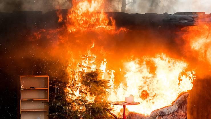 Mitte Dezember demonstrierte die Hamburger Feuerwehr, was passiert, wenn ein Weihnachtsbaum in Brand gerät. (Archivbild)