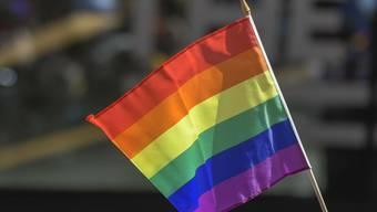 Zum vierten Mal in Folge verhinderte die Polizei in Istanbul die Durchführung der Gay-Pride. (Archivbild)