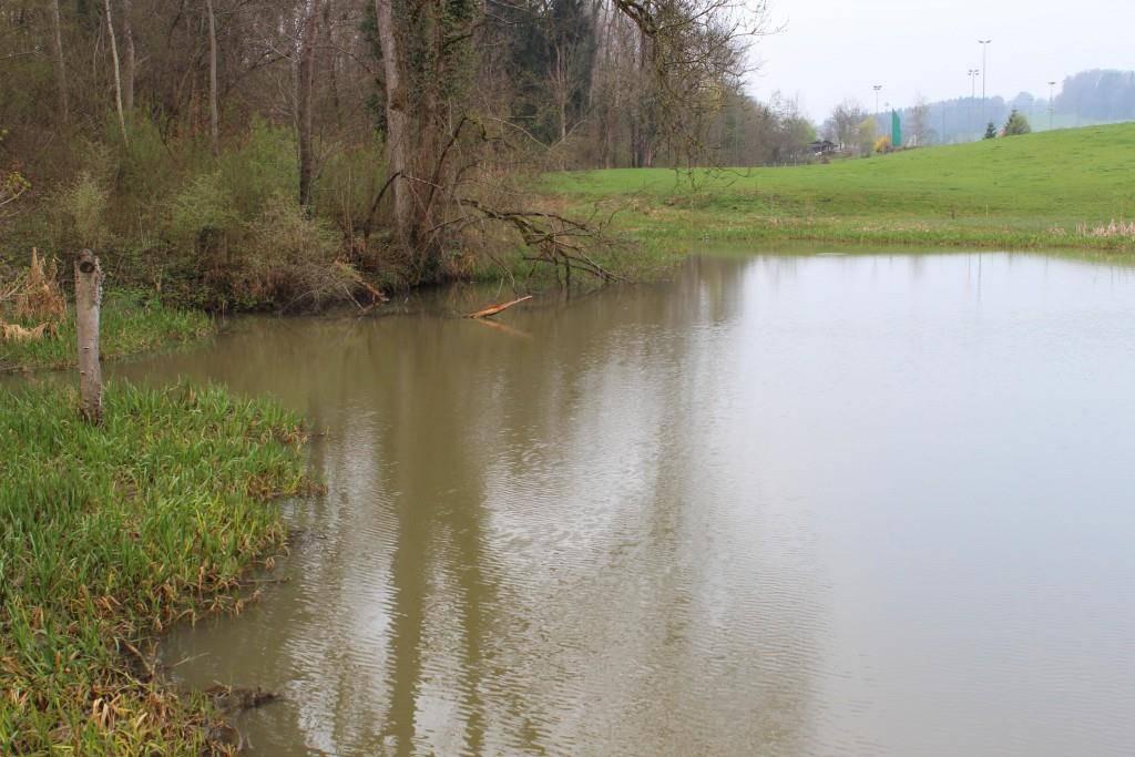 Der Wisbachweiher liegt in der Nähe, ob er betroffen ist, ist noch unklar.