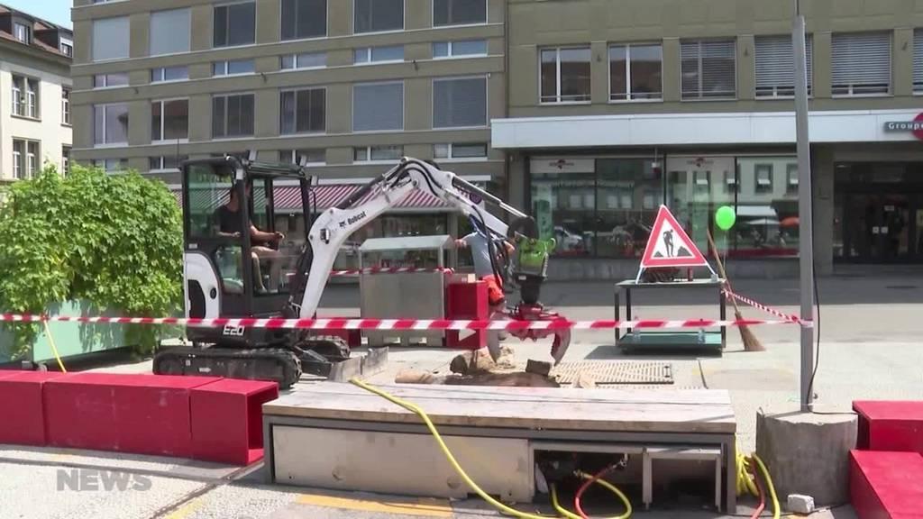Gärtner kämpfen in Bern für bessere Rechte