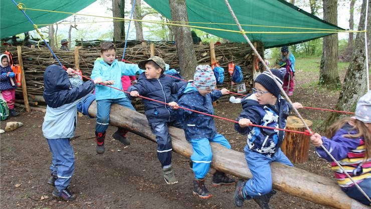 Die Zeiher Kindergärtler entdeckten diese Woche ihren Waldkindergarten.