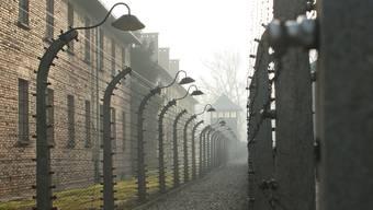 Das Konzentrationslager Auschwitz-Birkenau. Im Roman «Psalm 44» von Danilo Kiš gelingt Maria mit ihrem Baby die Flucht aus dem Vernichtungslager.