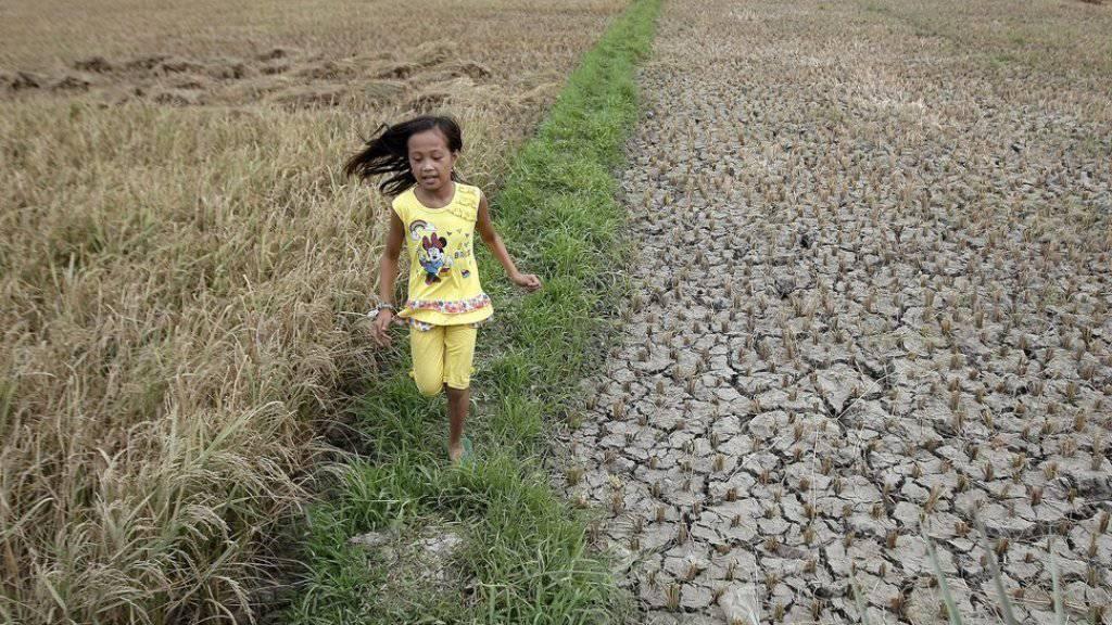 Südostasien gehört zu den Gegenden, in denen im März überdurchschnittlich Hohe Temperaturen gemessen wurden. In Asturias auf der philippinischen Insel Cebu riss die Trockenheit die Erde auf. (Symbolbild)