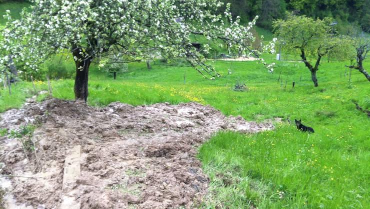 Im Gebiet Wyl ereignete sich am Sonntag nach starken Regenfällen ein Hangrutsch.