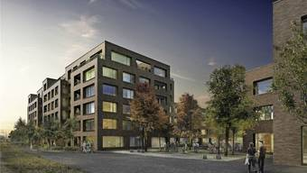 Die Anrainer stört der Schattenwurf der geplanten Wohnüberbauung. zvg/densa ag