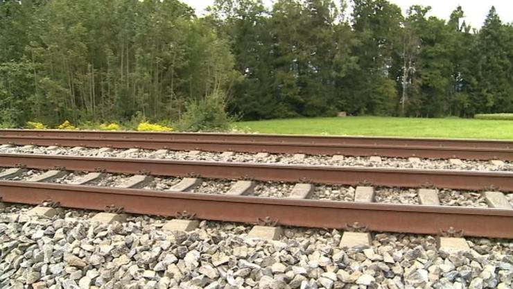 Das Gleis der Neubaustrecke bei Recherswil.