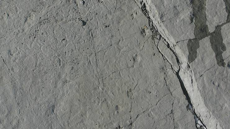 Spuren hinterlassen: Auf der Lufaufnahme des Piz Ela sind die dreizehigen Fussabdrücke eines grossen Raubsauriers deutlich zu sehen. (zvg)