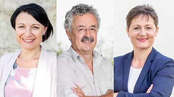 Yvonne Feri (SP), Robert Obrist (Grüne) und Franziska Roht (SVP)