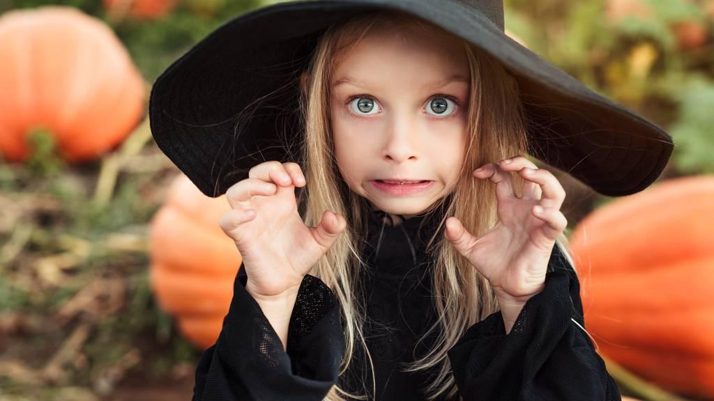 An Halloween fürchten sich nicht nur die Kinder