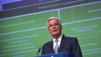 EU-Unterhändler Michel Barnier hat der britischen Regierung Bedingungen für ein ehrgeiziges Freihandelsabkommen nach dem Brexit angekündigt.