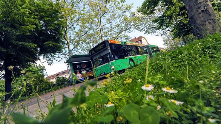 Diese Dieselbusse von MAN werden ersetzt. In Zukunft sollen sich BVB-Busse an Bushaltestellen elektronisch aufladen können. Martin Töngi