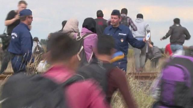 Chaotische Szenen in ungarischem Auffanglager