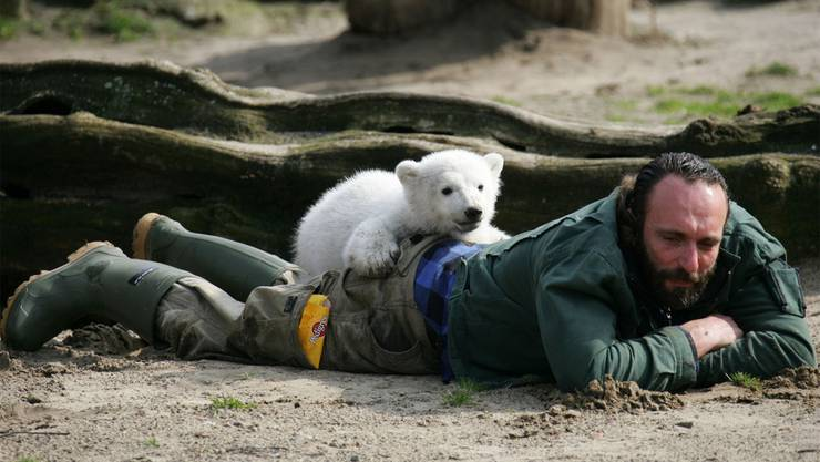 Knut mit seinem «Papa» Thomas Dörflein, der 2008 bereits starb
