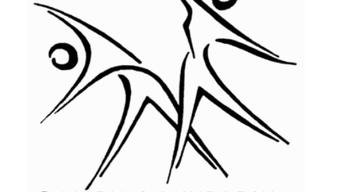 Logo_DTVZunzgen.png