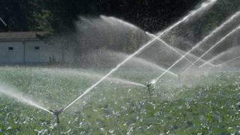 Im Thurgau muss Wasser gespart werden. (Archiv/ Walter Schwager)