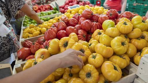 14 Prozent der Lebensmittel gehen vor Handel verloren