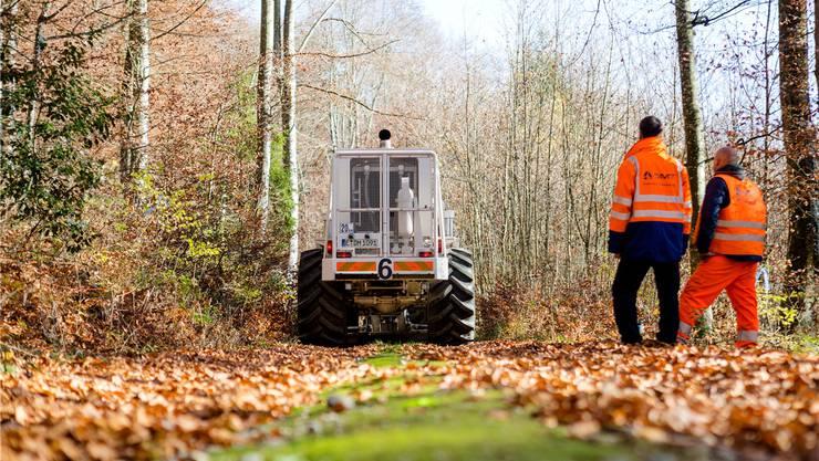 Messpunkt um Messpunkt arbeiten sich die Vibrationsfahrzeuge systematisch durch die 20 Gemeinden rund um den Bözberg, hier im Wald bei Remigen.