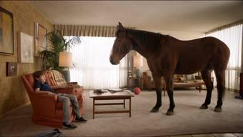 Lange war es ruhig. Doch dann ändert sich der Zeitenverlauf. Plötzlich steht ein Pferd im Wohnzimmer, wie hier in der TV-Reklame für «Skippy P.B. Bitess».