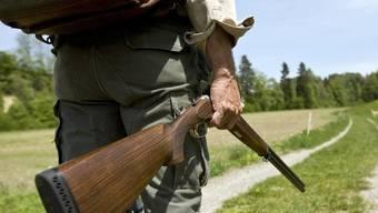 Das Gesetz über Jagd und Vogelschutz wurde bereits 1929 erlassen und entspricht nicht mehr den rechtlichen und tatsächlichen Begebenheiten. (Symbolbild)
